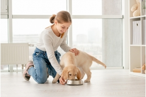 Choosing the Perfect Food for Your Puppy