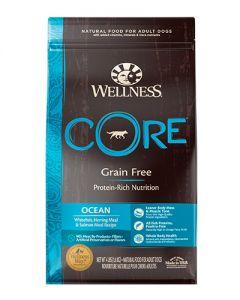 Wellness Core Ocean Recipe Dry Food