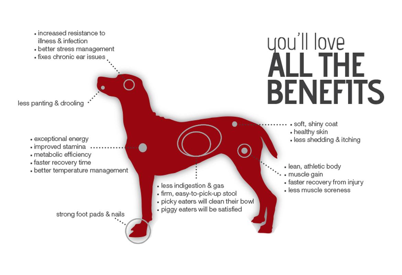 Redpaw X-Series Dog Food Benefits